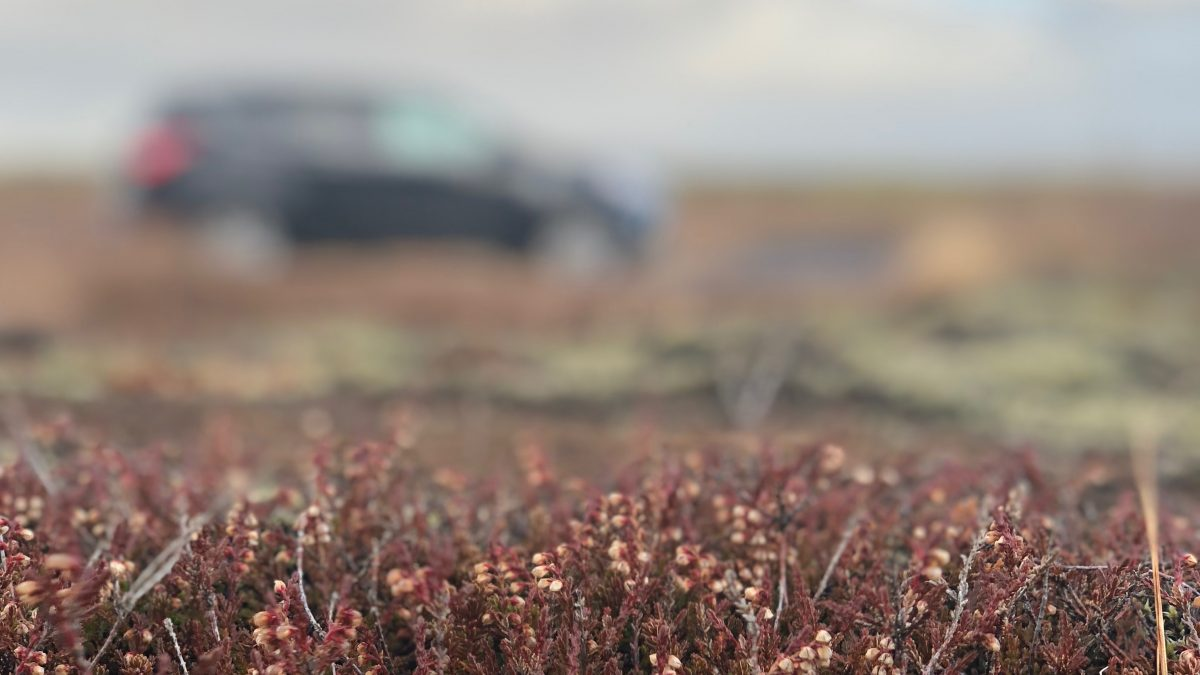 Reistips en praktische informatie IJsland