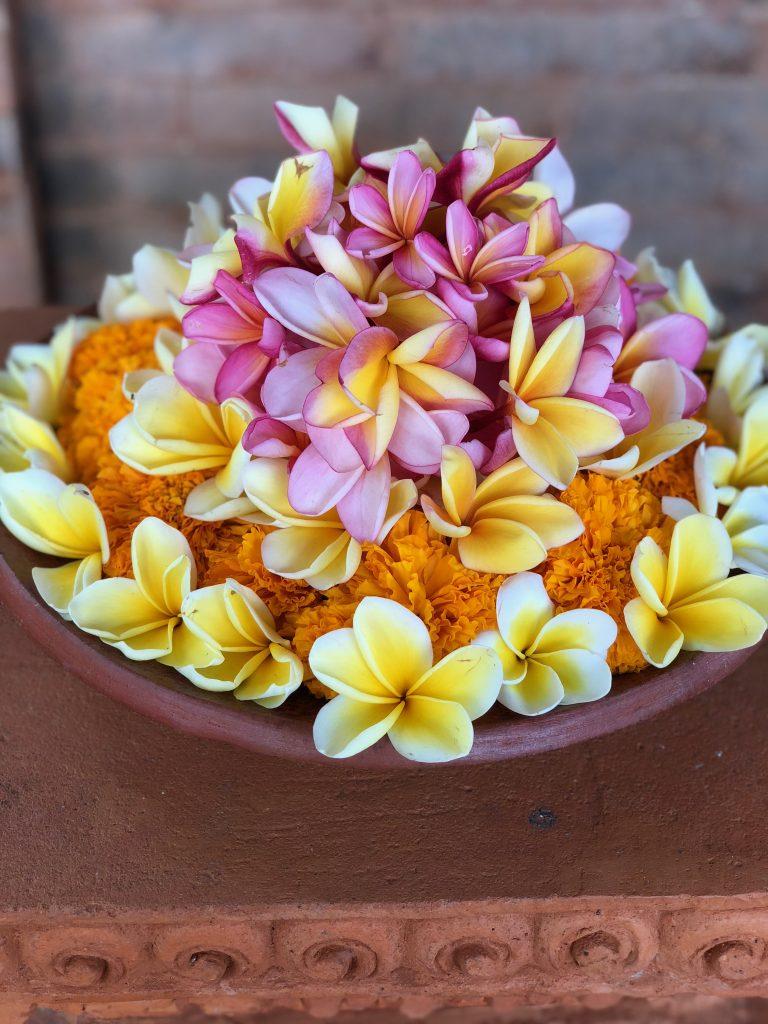 flowers in basket Bali